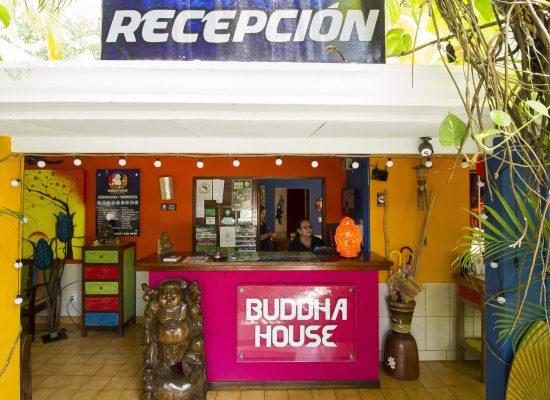 buddhahouse_jaco-IMG_0269-WEB